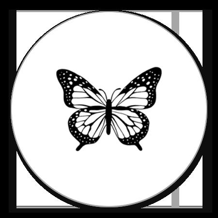 Vlinder zwart/wit